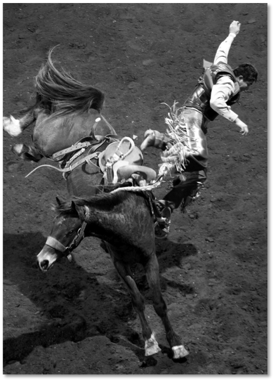 The back end of the horse and the rider's head create balance.